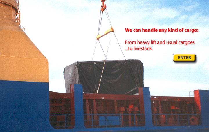 We can handle any kind of cargo: from heavy lift and usual cargoes to livestock.